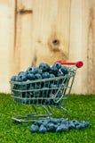 在购物车的蓝莓 图库摄影
