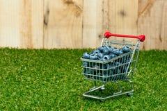 在购物车的蓝莓 库存照片
