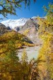 在费用冰川湖山saas瑞士之上 免版税库存图片
