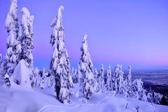 在赛普里斯山和温哥华地平线的滑雪坡道在日落 图库摄影