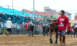在赛跑前的未认出的参加者准备水牛 免版税库存图片