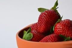 在赤土陶器罐的美丽的新鲜和成熟草莓 健康饮食和享受的概念用有机食品 免版税图库摄影