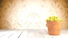 在赤土陶器罐的黄色花 免版税库存照片