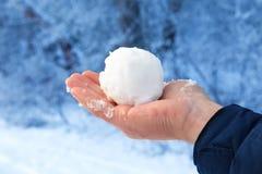 在赤裸的雪球供以人员在冬天森林的背景的手 库存图片