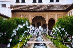 在赫内拉利费宫宫殿的Fontain  格拉纳达西班牙 免版税库存照片