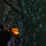 在赫尔德瓦尔,印度,印度宗教的神圣的镇的圣洁ghats 提供浮动花和灼烧的蜡烛的香客为Gange 免版税图库摄影