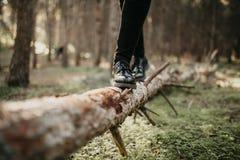 在走和平衡在一个下落的树干的黑鞋子的脚 免版税图库摄影