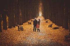 在走在一个美丽的秋天胡同的爱的夫妇在公园 免版税库存照片