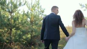 在走在杉木森林边缘的森林新娘和新郎的夫妇在婚礼之日 影视素材