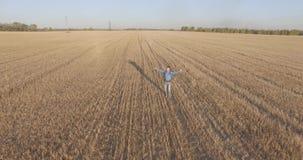 在走横跨一块巨大的麦田的年轻人游人的低飞行 手,优胜者,愉快和自由概念 股票录像