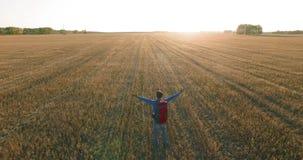 在走横跨一块巨大的麦田的年轻人游人的低飞行 手,优胜者,愉快和自由概念 股票视频