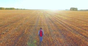 在走横跨一块巨大的麦田的年轻人游人的低飞行 影视素材