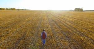 在走横跨一块巨大的麦田的年轻人游人的低飞行 股票录像