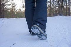 在起动的妇女腿关闭积雪的道路在冬天森林,背面图里 免版税库存图片