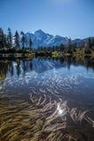 在起波纹的Mirror湖登上反映的Shuksan和积云 库存图片