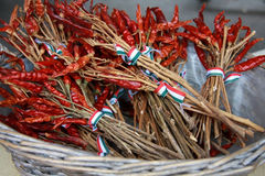 在起皱纹的碗装饰的匈牙利辣椒粉 免版税库存图片