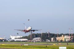 在起飞和鸟的飞机 免版税图库摄影