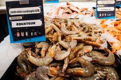 在超级市场鱼摊位的新鲜的厄瓜多尔虾 免版税图库摄影