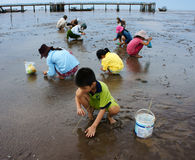 在越南海滩的童工 免版税库存图片