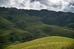 在越南西北部的La平底锅潭村, 库存照片