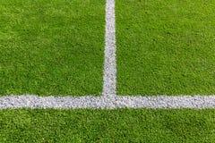 在足球场的空白线路 库存图片