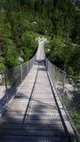 在足迹的一座高山索桥在Konigsee,德国附近 库存图片