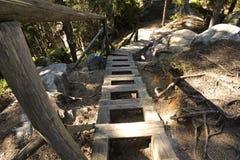 在足迹的土气木台阶 免版税库存图片