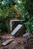 在足迹的岩石 库存图片