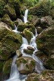 在足迹的瀑布对青城山,中国 免版税库存图片