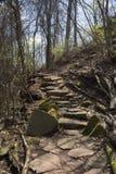 在足迹的自然楼梯 库存照片