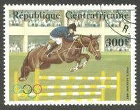 在跃迁的马在马展示 图库摄影
