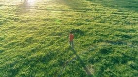 在跑在完善的绿草农村草甸的运动的人的飞行越野 在山的日落 股票视频