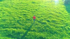 在跑在完善的绿草农村草甸的运动的人的飞行越野 r 股票视频