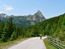 奥地利未认出的骑自行车者和高峰Riedlingspitze 库存照片