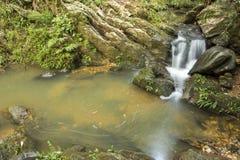 在跑在岩石中的小河的小瀑布在一个密集的森林中间 免版税库存照片