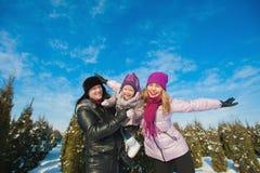 在跑明亮的衣裳冬天的乐趣的年轻美丽的家庭跳跃和,雪,生活方式,寒假 免版税库存图片