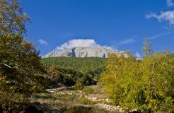 在距离的一个巨型岩石 免版税库存图片
