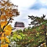 在距离的寺庙 免版税库存照片