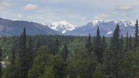 在距离的Denali 免版税库存图片