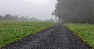 在路和树的薄雾 库存图片
