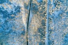 在路和森林的鸟瞰图冬时的 免版税库存照片