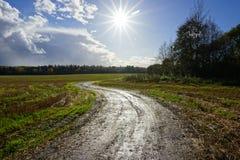 在路在领域和明亮的太阳的看法在天空 免版税库存图片