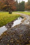 在路径的水坑在秋天 库存照片