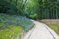 在路径附近的绽放庭院日本麦冬属 免版税库存图片