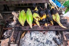 在路旁摊位卖的烤玉米在婆罗洲 库存图片