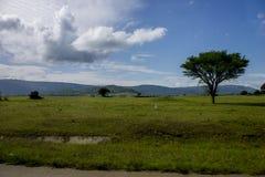 在路旁的一个beautifull场面对伊林加地区 免版税库存照片
