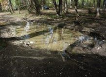 在路旁边的肮脏的大水坑 免版税库存照片