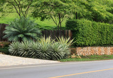 在路旁边的长的石墙篱芭 库存图片