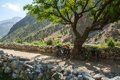 在路的两辆自行车 库存图片