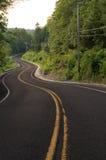 在路的多曲线通过森林 免版税图库摄影